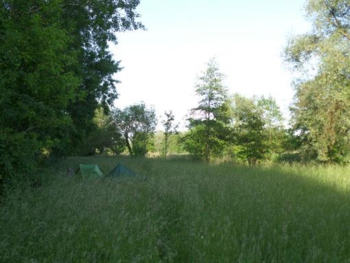 Tentjes in het lange gras naast het Storkower Kanal